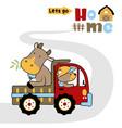 bull on truck with bear farmer cartoon vector image vector image