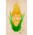 Corn watercolor poster vector image vector image