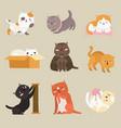 cute cats cartoon funny tabkittens playing vector image