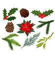 flat set christmas plants holly vector image vector image
