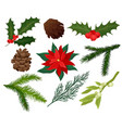 flat set of christmas plants holly with vector image