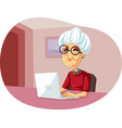 granny using laptop cartoon vector image
