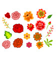 mexican flowers vector image