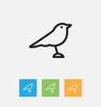 of zoology symbol on thrush vector image vector image