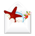 Open Envelope With Starfish And Flowers vector image
