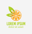 orange fruit slice logo template isolated vector image
