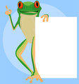 Red eyed tree frogs scene vector image