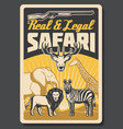 safari hunting sport poster with animals vector image vector image