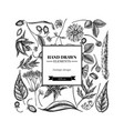 square floral design with black and white aloe vector image vector image