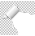 torn hole of lower right corner of transparent vector image