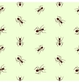 Seamless pattern with ants vector image