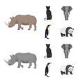 black rhinoceros panther wild cat african animal vector image vector image