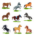 flat set of horses in various poses hoofed vector image