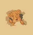 puppy in box vector image