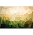 triangual background vector image