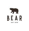 vintage bear logo design inspiration in brown vector image