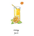 watercolor glass of summer orange juice vector image vector image