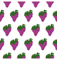 Seamless pattern with bunch of grapes vector image