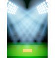 Background for posters night cricket stadium in vector image vector image