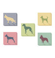 Icon of dogs vector image vector image