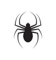 spider graphic silhouette template isolated vector image vector image