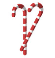 two christmas red and white candy sticks on a vector image vector image