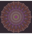 Violet and Pink Line Mandala vector image vector image