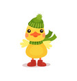 cute little yellow duck chick character in green vector image vector image