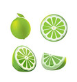 lemon green fruit isolated set vector image