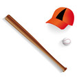 baseball bat equipment ball and baseball cap vector image