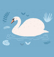 beautiful white swan swimming in water pond or vector image vector image