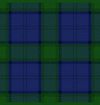 blue and green tartan plaid seamless pattern vector image vector image