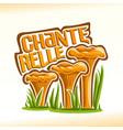 chanterelles mushrooms vector image