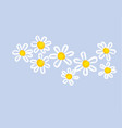 classic hand drawn chamomile design element vector image vector image