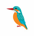 kingfisher predatory birds wildlife vector image