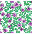 petunia pattern vector image vector image
