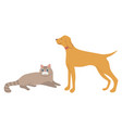 animals cat and dog domestic pet mammal vector image