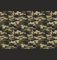 camouflage seamless pattern background horizontal vector image vector image