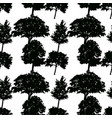 seamless pattern silhouettes deciduous trees vector image vector image