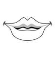 sexy women lips vector image
