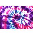 tie dye spiral shibori colorful watercolour vector image vector image