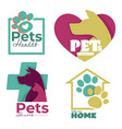 vet clinic or animal shelter dog and cat isolated vector image vector image