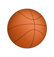 basketball isolated on a white background vector image