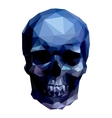 blue skull vector image vector image