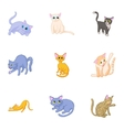 Cat family icons set cartoon style vector image vector image