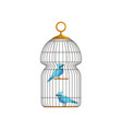 couple blue jay characters in big hanging cell vector image
