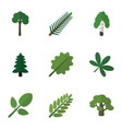 flat icon bio set of park maple timber and other vector image vector image