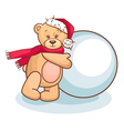 teddy and snowball vector image vector image