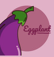 eggplant vegetable cartoon vector image