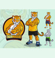 tiger mascot for spots and martial arts logo vector image vector image